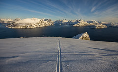 Still very wintery. A great day for skiing Håja island. (Snemann) Tags: winter norway march skiing tromsø coastlines troms backcountryskiing pentaxk5