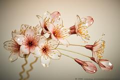 2016    -- Cherry Blossom 02 ( sakae) Tags: hair out cherry pin time blossom cnn ornaments  kimono resin sakae        kanzashi                 chromavision interbee2015