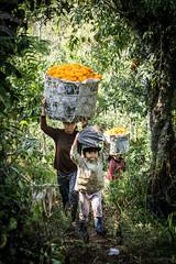 Eco Village (AnElisaJo) Tags: travel indonesia asia faces wanderlust ecovillage travelphotography peopleofasia