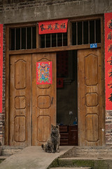 Dog in the village.jpg (Photos4Health) Tags: china old travel sunset shadow man male guy ecology sunrise dark person li asia village place guilin yangshuo hill chinese elderly fisher stick tradition guizhou villager guangxi ecotourism xingping