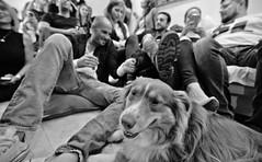 [116] fuzzy moment (alex.babi) Tags: people urban blackandwhite bw canon bnw tlv 6d 1635 1635mm project365 canon6d 1635f4 1635f4l