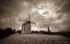 """Le moulin dit """"de Daudet"""" (Rmi Avignon) Tags: moulin fontvieille daudet"""