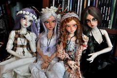 DSC_1264 (nekomuchuu63) Tags: halloween head 14 event fairyland msd shushu minifee mirwen