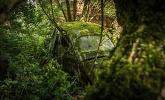 DSC_8160 (Photographe-Runner) Tags: auto graveyard car lost decay beetle cox voitures coccinelle urbex abandonn