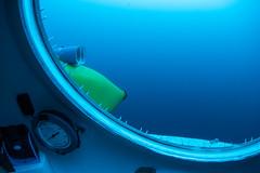 Diving through 200ft (ianc7777) Tags: leica sony submarine stanley karl roatan exploration institue deepsea idabel trielmar a7rii