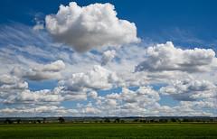 Nuvols sobre l'Urgell / Clouds above the plains (SBA73) Tags: sky green primavera clouds spring cel catalonia cielo crop nubes planes april catalunya camps campos catalua trigo verd nuvols lleida catalogna urgell katalonien catalogne ponent dryland blat secano sec belianes    preixana