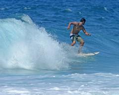 DSC_4351 e5 Banzai crop (J Telljohann) Tags: hawaii surf oahu surfer banzaipipeline