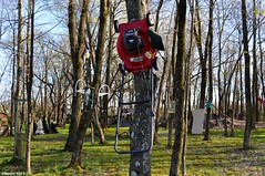 Mowing up a tree (Studio 9265) Tags: old city red usa tree art apple grass museum rural america vintage garden toy photography artwork nikon outdoor kentucky ky united country lawn rusty dirty valley push states mower hillbilly murray hung calvert obsolete offbeat nailed 2016 unconventional d5000