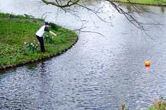 Rotterdam 10-04-2016 SM-21 (Pure Natural Ingredients) Tags: park flowers holland garden spring nikon d70 nederland thenetherlands sigma f18 f28 bloemen euromast zuid 105mm niceweather voorjaar schoonoord d90 50mmoutdoor botanicbotanishetuin