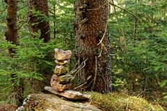 Bayerischer Wald (M. Franziska D.) Tags: natur landschaft bayerischerwald kleinerarbersee