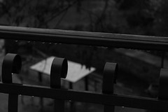 If you want the rainbow, you bear the rain. (Ur_an_xkid) Tags: black rain photo iron pic railing blacknwhite