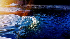 Lake adventures #pictureholic #new #youngphotographer #meandmycamera #followme #lake (miyaprince) Tags: new followme meandmycamera youngphotographer pictureholic