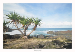 Coffs Harbour nsw 2450 (marcel.rodrigue) Tags: seascape nature landscape photography australia nsw newsouthwales coffsharbour midnorthcoast jkamidnorthcoast marcelrodrigue