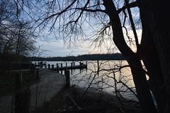 DSC_1292 (Six Sigma Man (Thank you for the 1.8M+ views)) Tags: sunset pond nikon longisland smithtown nikond3200 suffolkcounty blydenburgh blydenburghcountypark blydenburghpark