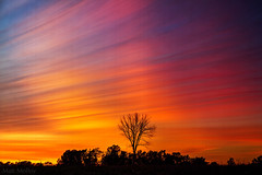 Chronological Colours (Matt Molloy) Tags: sunset sky ontario canada tree field vertical clouds landscape photography timelapse bath vibrant branches colourful slices lovelife mattmolloy timeslice