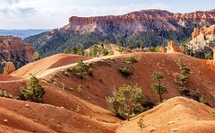 Hiking in Bryce Canyon (Phil Horton) Tags: travel canon morninglight utah desert hiking nationalparks exploration americansouthwest