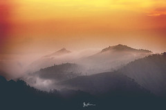 """Stare at the silence"" (Robins Mathew Z) Tags: morning travel india mist landscapes places hills silence lonelyplanet tamilnadu kodaikanal travelindia travelphotography morningcolour"