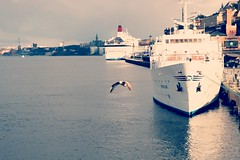 2016-22-4--21-33-32 (rmphotography.info) Tags: house bird water ferry spring ship eagle stockholm dove ships habor