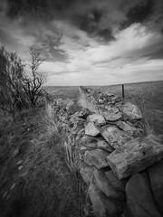 the road less travelled (liam.jon_d) Tags: blackandwhite bw cloud monochrome wall fence landscape mono arty cloudy australian australia stonewall sa southaustralia stonefence adelaidehills slky mtlofty loftys theroadlesstravelled mtloftyranges southaustralian stonewalling billdoyle mountloftyranges lofties stonefencing easternscarp sedanhillroad keynetonsedanroad heritageimset loftyrangesimset