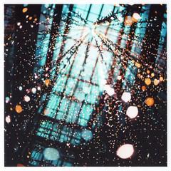 Illumination (Yuta Ohashi LTX) Tags: light film japan square colorful bokeh illumination scan hasselblad  epson f28 carlzeiss fujicolor planer   pro400h  503cx     cf80mm   ep705a