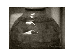 Still Life #2   The Tea bottle. (Louis Shum) Tags: stilllife macro art lumix artistic border grain monotone container capture zonesystem louisshum