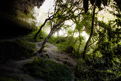 Our Secret Place 2 (Kevin STRAGLIATI) Tags: light vacation sunlight france tree green nature grass trek landscape amazing natural hiking path secret south magic huge cave ardeche grotte