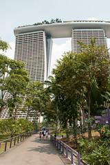 Gardens By The Bay (Ian Dodd) Tags: singapore gardensbythebay marinabaysands