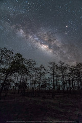Nature Phenomenal : the dark trail (KRW_GNS) Tags: blue light wild sky abstract black color texture nature beautiful night forest dark way stars landscape star evening dusk background space cluster ground science galaxy nebula astrophotography midnight astronomy universe milky starry cosmos astrology constellation