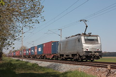 BB 27136M / Morbecque (jObiwannn) Tags: train locomotive prima fret ferroviaire
