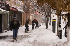 Snowstorm Jonas-5 (Diacritical) Tags: snow brooklyn iso800 pattern f45 jonas blizzard 70 2470mmf28 0ev nikond4 nikoncorporation sec secatf45 douglascpalmer2014 january232016 snowstormjonas
