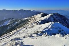 ~~  Morning Snow (Shangfu Dai) Tags: sky snow sunrise landscape nikon taiwan bluesky  formosa     d800  hehuan       3416m afs1635mmf4
