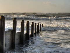 West Wittering Beach, West Sussex (neilalderney123) Tags: wood sea beach wet water landscape olympus omd omdem5mk2 2015neilhoward