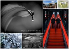 2015-12-6 al thani annahmen (Penoly) Tags: 2015 fiap quatar acceptances saoudalthaniaward