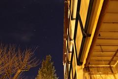 Stars (daniel.ferner96) Tags: trees winter light night stars orion astronomy
