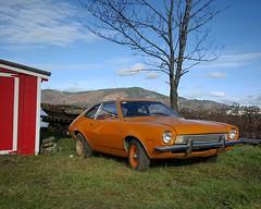 Stalled Stallion (KurtClark) Tags: orange ford 1971 1972 compact pinto southbend
