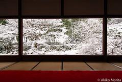Hosenin Temple in Snow - Kyoto, Japan (Akiko Morita) Tags: travel holiday tourism beautiful beauty japan temple photography photo kyoto asia tour image spirit buddhism visit zen   spirituality spiritual visiting eastasia travelphotography   hosenintemple akikomorita