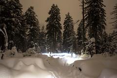 Leuchtstreifen (Gruenewiese86) Tags: schnee winter snow nature night forest canon germany landscape deutschland nationalpark tour nightshot hiking brocken 1740 harz winterscape wanderung 6d forestscape harzlandschaft harzlandschaften