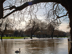 River Avon in flood. Stratford. 9 February 2016. (ricsrailpics) Tags: uk warwickshire stratforduponavon 2016 floodingriver