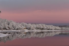 Purple Sky (ClopezPhoto) Tags: trees winter sky lake snow clouds landscape nikon purple d5500