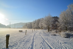 Winter morning (katka8-0) Tags: road morning winter sky snow tree nature fence nikon republic czech outdoor tracks frosty clear wallachia d5200