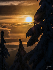 Mount Seymour 2015/16 (jennchanphotography) Tags: travel winter sunset wild mountain snow canada ski tourism nature sport snowboarding skiing bc landmark tourist explore local seymour iconic attraction chairlift activities mountseymour jennchanphotography