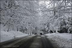 NEWLY PLOWED, I (susies.genii) Tags: road trees scenery streetscene eastrockpark treelinedstreet newhavenct snowyscene newsnow snowcoveredcar viewthroughwindshield plowedroad woodsyscene february52016