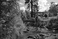 Radau Wasserfall (vb-bildermacher) Tags: bw nationalpark natur himmel wolken steine brcke landschaft wald bltter weiss bume baum schwarz wandern harz naturpark bauch weis bergwald bachlauf nationalparkharz wandergebiet