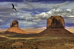 Monument Valley Eagles (grbenson3) Tags: monumentvalley usa utah merricksbutte eastmitten birds eagle extraordinarilyimpressive diamondclassphotographer