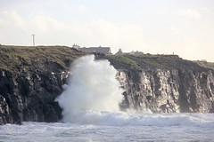 IMG_8352 (DaveGifford) Tags: ireland clare spanishpoint wildatlanticway