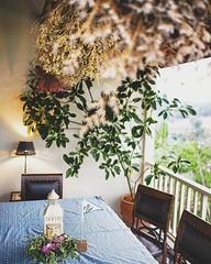ค้นพบร้านอาหารบรรยากาศแบบkinflok ชื่อร้าน Hacienda Coffee House ไม่ไกลจาก ม แม่ฟ้าหลวง แนะนำครับ อาหารอร่อย เค้ก ของหวานน่าทานมาก มี เชฟ ประสบการณ์สามสิบปี ปรุงให้ พนักงานบริการดี ร้านนี้อยู่เลย ร้านcat café ไปอีกไม่ไกล วิวสวยมากครับ พิเศษไปช่วงนี้จะมีไฟป