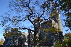 DSC_0829 (OneVinView) Tags: newyork centralpark manhattan belvederecastle