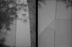 PenEE-FP4+-009 (James Harr's Photos) Tags: 35mm diptych halfframe expiredfilm ilfordfp4 olympuspenee parodinal