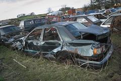 DSC_9815 (srblythe) Tags: uk classic cars ford abandoned graveyard car austin volkswagen scotland volvo rust fiat decay north rusty british scrapyard hyundai leyland vauxhall volvograveyard
