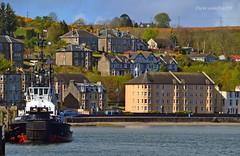 SD Impulse (Zak355) Tags: scotland boat ship scottish vessel tug shipping bute rothesay isleofbute serco sdimpulse